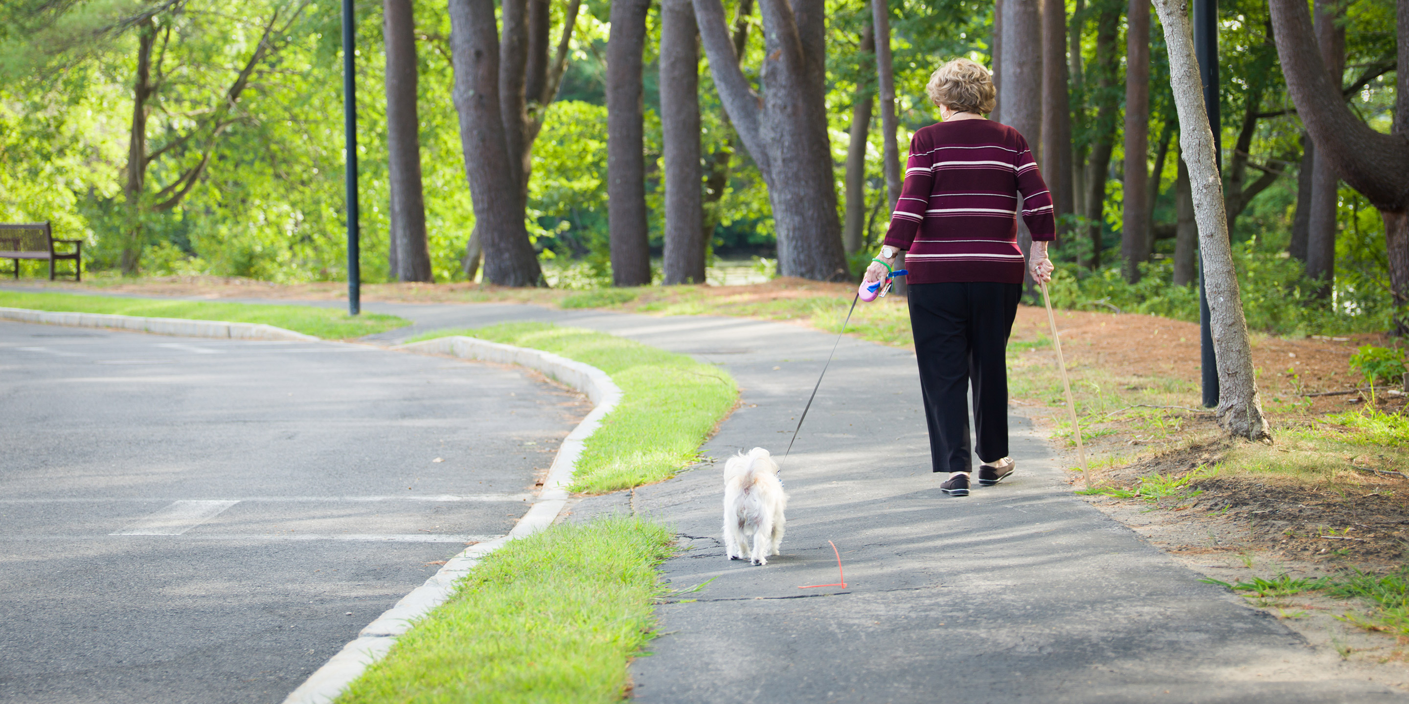 An older adult woman walks on a trail with her dog's leash in one hand and a walking stick in the other.