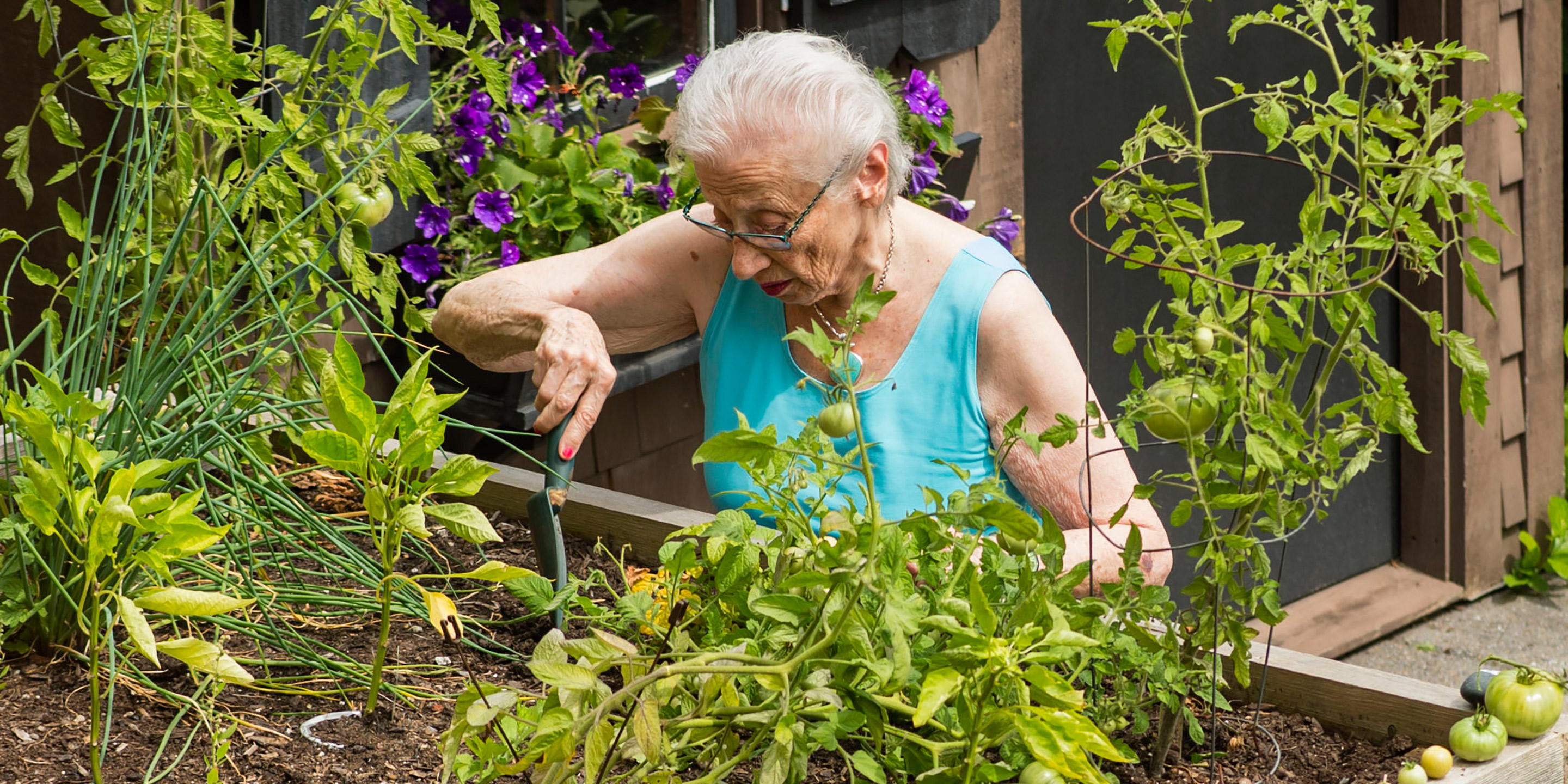 A female senior tends to her garden outside