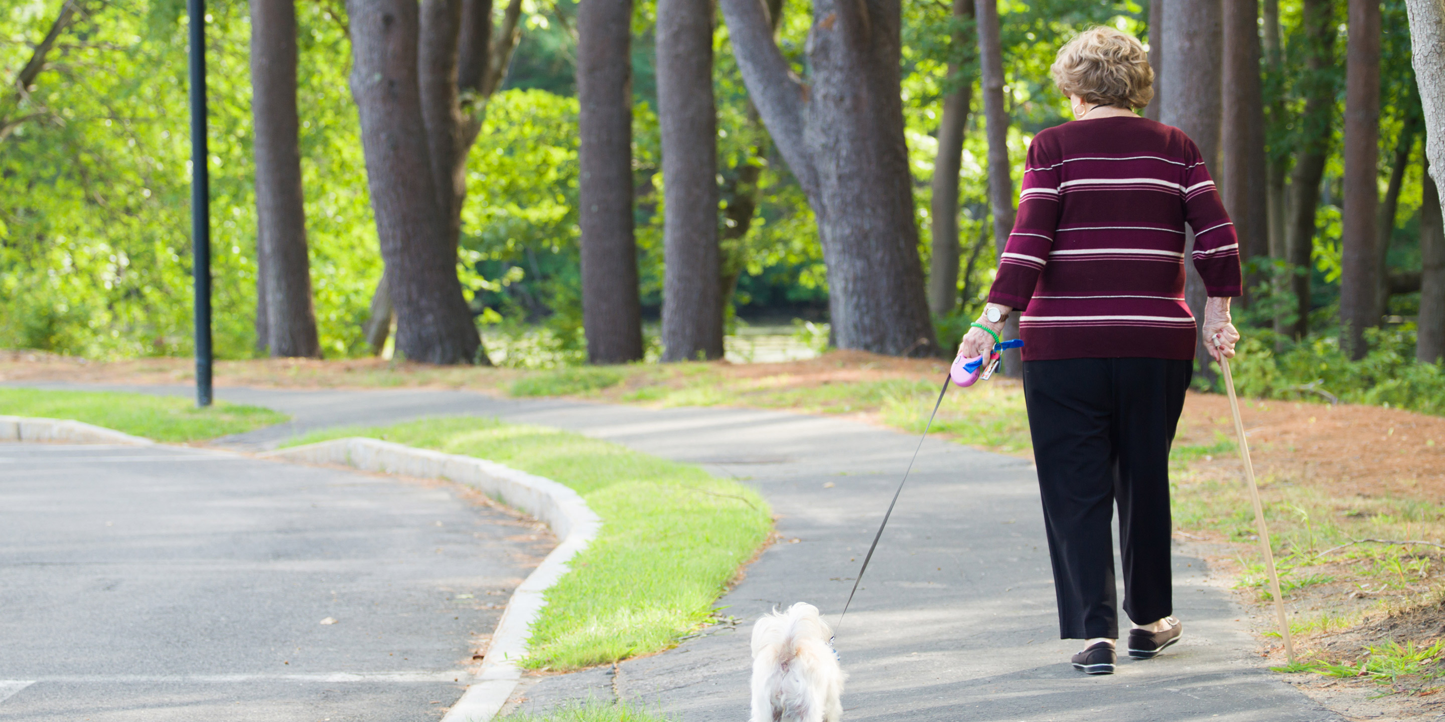 A woman walks down a path holding a dog leash in one hand and a walking stick in the other.
