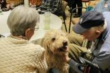 An older couple enjoy the companionship of a dog.